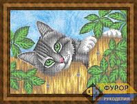Схема для вышивки бисером - Кот на заборе, Арт. ЖБч3-93