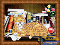 Схема для вышивки бисером - Спящий кот, Арт. ЖБч3-094