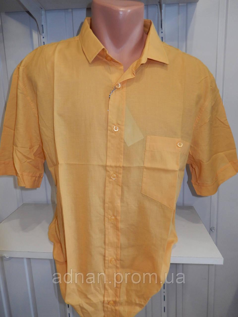 Рубашка мужская HIZZ короткий рукав, батал, однотонная, с карманом 006