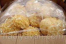 Гриб Коралловый (Серебряные ушки) 5 кг., фото 2