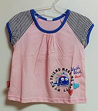 Комплект (футболка + шортики)