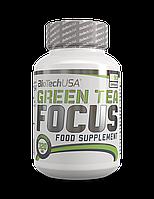 Green Tea Focus BioTech, 90 капсул
