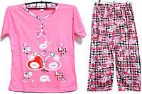 Пижама люкс Турция 100% хлопок размер M ( наш размер 44-46)