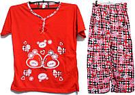 Пижама люкс Турция 100% хлопок размер L ( наш размер 46-48)