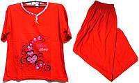 Пижама люкс Турция 100% хлопок размер 4XL ( наш размер 54-56)