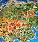 Детская карта мира, фото 3