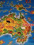 Детская карта мира, фото 4