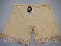Трусы панталоны 2792 Разные цвета. XL-3XL (бамбук)