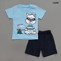"""Летний костюм """"Енотик"""" для мальчика. 68, 74, 80, 86 см, фото 1"""