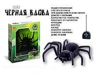 """Игрушка Паук """"Черная вдова"""" ZYB-B0046 радиоуправляемый"""