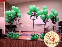 №18 Деревья из гелиевых шаров Днепр