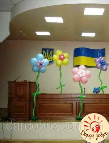 №31 Ромашки из шаров с гелием  Днепр