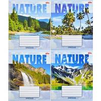 Тетрадь цветная 12 листов,клетка«Природа»