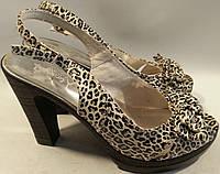 Босоножки женские натуральная кожа р38 LADY леопардовый VADD