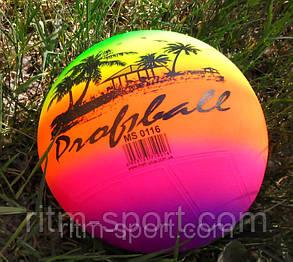 Мяч детский резиновый волейбол радуга, фото 2