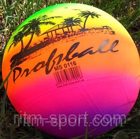 Мяч детский резиновый волейбол радуга
