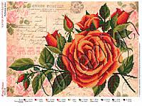 Схема для вышивания бисером Любимые розы