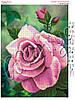Схема для вышивания бисером Свежесть розы