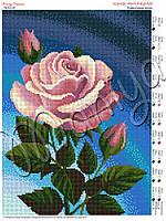 Схема для вышивания бисером Красочные розы (полная зашивка)