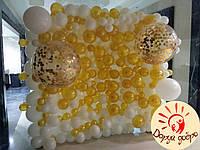 №8 Фотозона из воздушных шаров Днепр