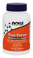 Поддержка концентрации внимания - Тру Фокус / NOW - True Focus (90 caps)