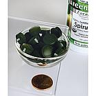 Swanson GreenFoods Formulas Certified Organic Spirulina USDA organic made in INDIA  500 мг 180 таб, фото 2