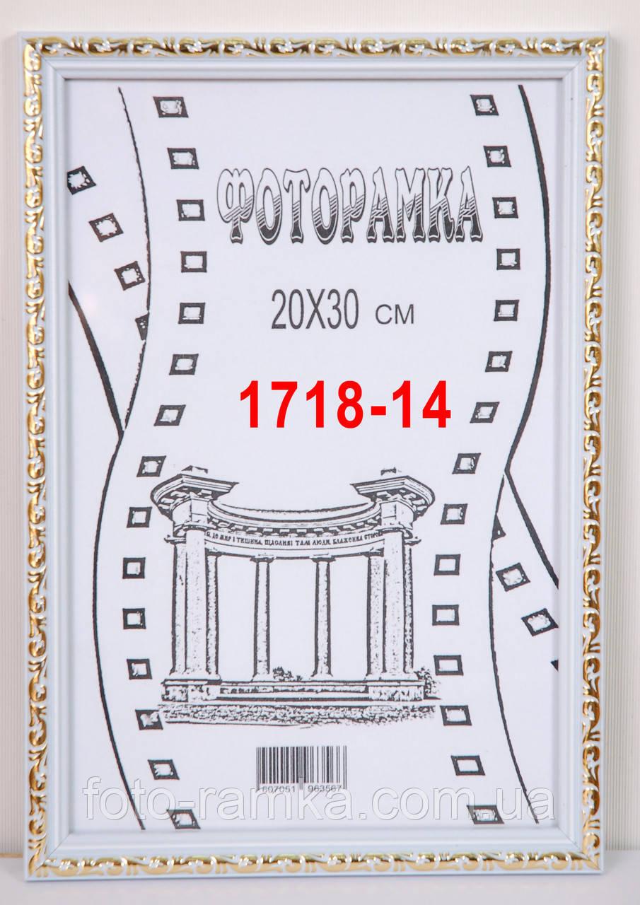 Фоторамка 15х21 1718