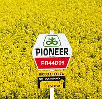 Озимый рапс ПР44Д06, Пионер