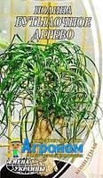 """Семена цветов Нолина Бутылочное дерево, многолетнее, 4 шт,  """"Семена Украины"""", Украина."""
