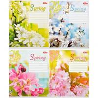 Тетрадь цветная 18 листов,линия «Весна»