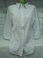 Женская блузка большой размер 29012