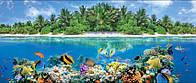 Панно Подводный мир на кафеле, плитка 25х60см.
