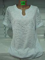 Женская блузка большой размер 5786