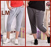До 74 размера, Женские летние модные повседневные капри спортивные удобные серые 77028