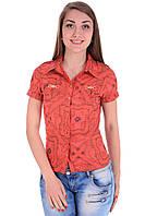Блуза Esay 491, фото 1