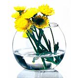 Ваза Аквариум Pasabahce Flora 43417, фото 2
