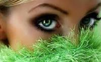 Программа  для активной профилактики воспалительных заболеваний глаз (конъюнктивит, блефарит, халязион