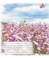 Тетрадь 12 листов косая картонная обложка красные поля офсет Бриск в ассортименте TB12KOS