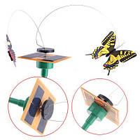 Бабочка на солнечных батарейках