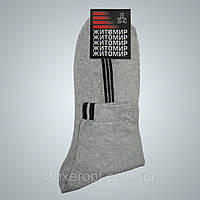 Мужские носки Житомир - 6.00 грн./пара (Сетка, светло-серые, полоска), фото 1