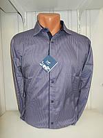 Рубашка мужская Enisse длинный рукав, под шелк, стрейч, заклёпки узор №1  001\ купить рубашку