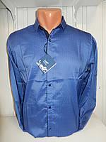 Рубашка мужская Enisse длинный рукав, под шелк, стрейч, заклёпки узор №2  002\ купить рубашку