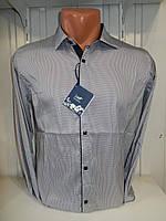 Рубашка мужская Enisse длинный рукав, под шелк, стрейч, заклёпки узор №3  001\ купить рубашку