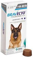 Бравекто Жевательная таблетка для собак от блох и клещей, весом 20-40 кг