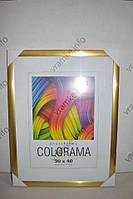 Фоторамка Colorama 30x40см. gold 55мм.