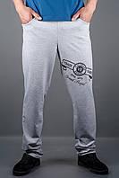 Мужские спортивные штаны Шерон (серый), фото 1