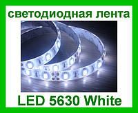 Лента светодиодная белая LED 5630 White - 5 метров в силиконе!Акция