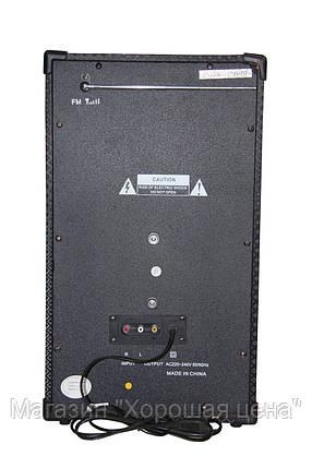 Аккустическая система USBFM-198D-DT, фото 2