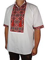 Мужская вышиванка Flax 038-ч Н черв. с коротким рукавом
