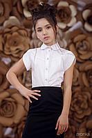 Блузка Classik